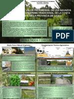 ELEMENTOS DE VALOR PATRIMONIAL DE LOS NAVAZOS COMO AGROECOSISTEMA TRADICIONAL DE LA COSTA NOROESTE DE LA PROVINCIA DE CÁDIZ