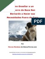 Como Enseñar a un Cachorro de Raza San Bernardo a Hacer sus Necesidades Fuera de Casa (1)