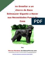 Como Enseñar a un Cachorro de Raza Schnauzer Gigante a Hacer sus Necesidades Fuera de Casa