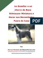 Como Enseñar a un Cachorro de Raza Schnauzer Miniatura a Hacer sus Necesidades Fuera de Casa