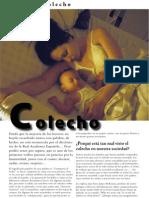 Articulo Colecho Revista Lactando