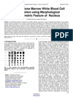 Automatic Bone Marrow White Blood Cell Classfication Using Morphological Granulometric Feature of Nucleus