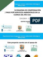 Diseño de un esquema de compensación/pago por SA en Cali