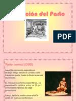 Atencion Del Parto2774
