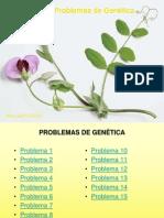15 Problemas Genetica