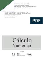 Cálculo Numérico - Francisco & Jânio - IFECT-CE EaD