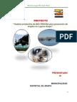 Proyecto_cadena Productiva de Bio-trucha Para Generacion de Empleo en La Laguna de Arapa_puno, Peru.