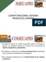 COMITÉ NACIONAL SISTEMA PRODUCTO CAPRINO