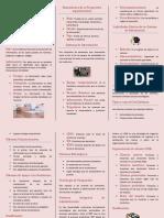 folleto sistemas