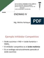 4enzimas IV