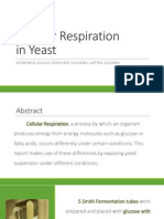 Exercise 14 - Cellular Respiration in Yeast