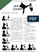 Shishi Yangchuan Baguazhang Shiyong Jifa Jingcui.Chen Zhongyan+