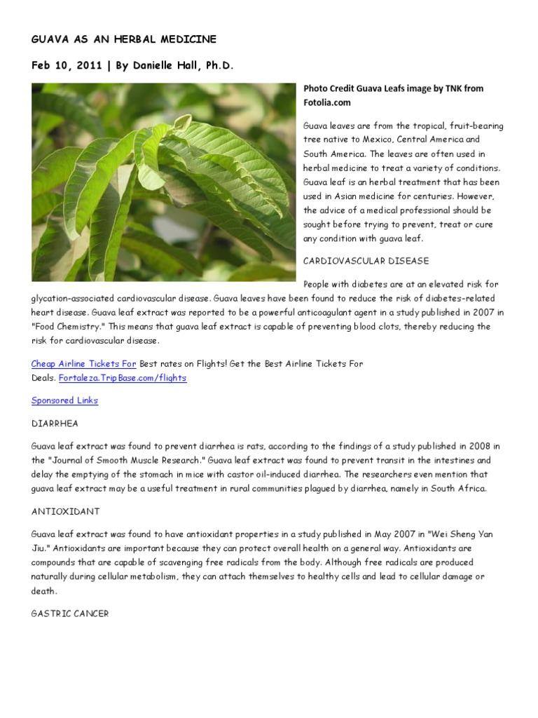 Literature review herbal medicine