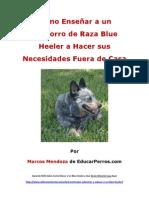 Como Enseñar a un Cachorro de Raza Blue Heeler a Hacer sus Necesidades Fuera de Casa