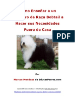 Como Enseñar a un Cachorro de Raza Bobtail a Hacer sus Necesidades Fuera de Casa