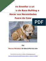 Como Enseñar a un Cachorro de Raza Bulldog a Hacer sus Necesidades Fuera de Casa