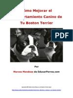 Como Mejorar el Comportamiento Canino de tu Boston Terrier
