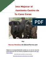 Como Mejorar el Comportamiento Canino de tu Cane Corso