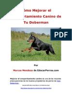Cýýmo Mejorar el Comportamiento Canino de tu Doberman
