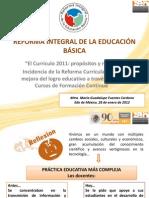 Curricula 2011 y Formacion Continua