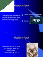 3-estática fetal