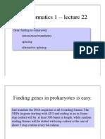 Lecture Bioinformatics