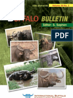Buffalo Buletin