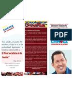 Pmv - Programa de La Patria