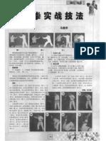 Piguaquan Shizhan Jifa.Ma Junxiang