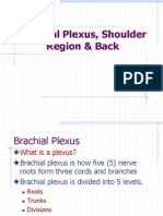 Upper Limb_Brachial Plexus,Shoulder Region & Back