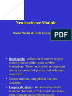Basal Nuclei & Their Connections