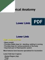 Lower Limb_Clinical Anatomy