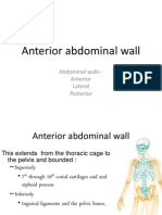 06. Anterior Abdominal Wall