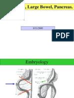 Abdomen_Small Bowel,Large Bowel & Pancrease