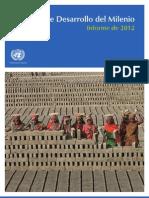 Informe_ODM_2012