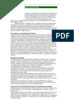 Atendimento Fisioterápico em Domicílio