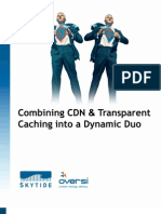 Combining CDN and Transparent Caching Into a Dynamic Duo
