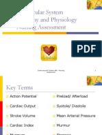 Cardiovascular AP & Nursing Assessment