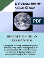 Ecosystem 1