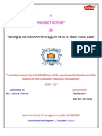 Project Report of Raj Nandan