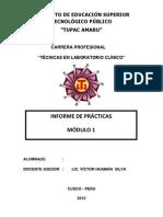 MODELO PRESENTACIÓN DE INFORME