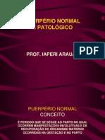 Puer+Norm+Pat