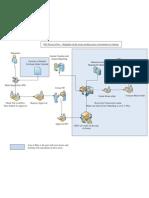 PTC Process Training Expectations