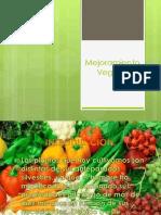 Mejoramiento Vegetal