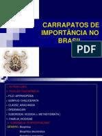 IMPORTÂNCIA_DOS_CARRAPATOS_NO_