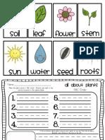 Plant Literacy Station Work