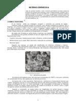 matceramicos1b