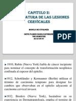 Nomenclatura de Las Lesiones Cervicales Cap 2