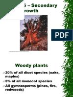 Chap5-secondarygrowth