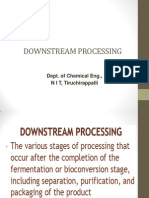 Down-Stream Process